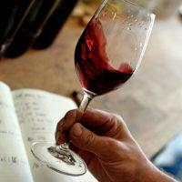 FXN, François Xavier Nicolas, créateur de vins